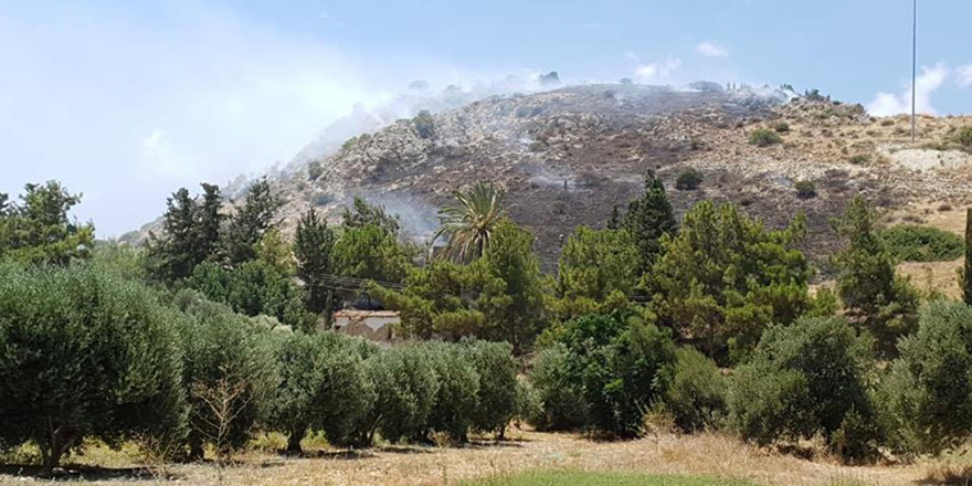 Lefke'de yangın: Makilik alan zarar gördü