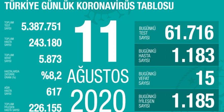 Türkiye'de Coronavirüs: 15 kişi hayatını kaybetti, 1183 yeni tanı kondu