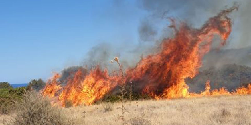 Arazi yangınları korkuttu