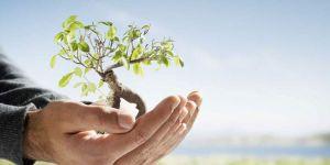Anayasa değişikliğiyle çevre korunmasına KATKI