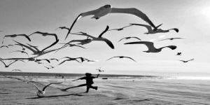 Kıbrıs'ta Yükselen Yeni Bir Umut: Mustafa Akıncı