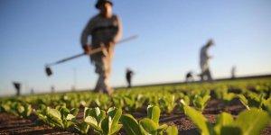 Genel Tarım Sigortası, ekili alanları uydudan izleyecek