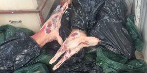 Akıncılar'da kaçak et operasyonu