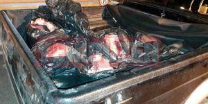 600 kilo kaçak et