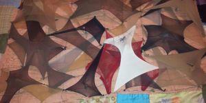 Feminist Bir Bakışla Sanat Üretmek: Zehra Şonya