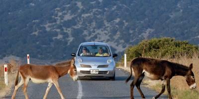 'Kaçak yapılara değil, eko- turizme sahip çıkın'