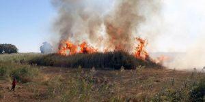 Kayıp Şahıslar Komitesi'nin iş araçları yangını önledi
