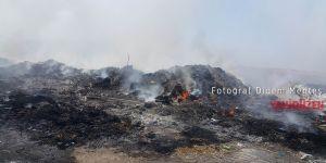 Gaziköy'de yangın korkuttu