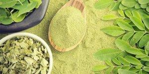 Moringa çayının 10 Faydası
