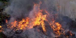 Değirmenlik ve Yeşilırmak'ta yangın