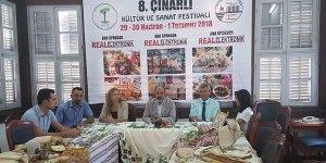 8'nci Çınarlı Kültür ve Sanat Festivali
