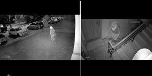 Kermiya'da 'hırsız' tedirginliği