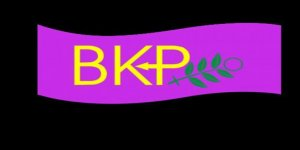 """BKP Kadın Meclisi: """"İnsanlık ayıbı ve dram…"""""""