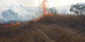 Alayköy-Türkeli kavşağı yakınlarında yangın