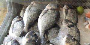 """""""Çipura balığı konusunda tüketici yanıltılıyor"""""""