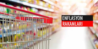 DPÖ: Ocak enflasyonu 0.53