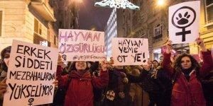 Feminist Mücadeleye Yeni Perspektifler Arayışı: Vegan Ekofeminist Bir Pencereden Bakmak