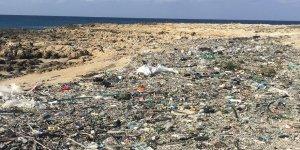 Ronnas Sahili katı atıklardan temizleniyor
