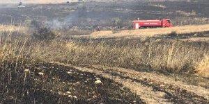 Haspolat'taki yangında ağaçlar kül oldu
