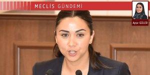 Polis ve asayiş sorunları Meclis'in gündeminde