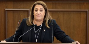 Manavoğlu: Özel komite kurulmasını reddedenler vatan haini