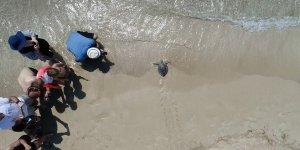 'Pisgot' denizle buluştu