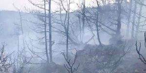 """Karzaoğlu: """"Bazı haberler yanlış, yangın bir saat içinde kontrol altına alındı"""""""