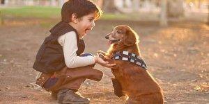 """Özçınar: """"Çocuklarımıza hayvan sevgisini aşılamalıyız"""""""