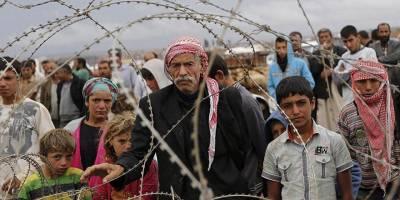 Suriyeli Göçmenler, Balon Balıkları ve Küresel Isınmalar