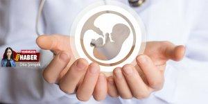 Bakan Pilli: 8 tüp bebek merkezlerine zaman tanındı