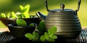 Moringa Çayı: Faydaları, Nasıl Yapılır ve Yan Etkileri