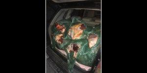 504 kilo kaçak et ile yakalandı