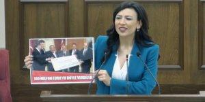 """Özdenefe: """"Ercan'ın Mart sonu teslimi mümkün görünmüyor"""""""