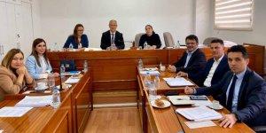 Komite'de 'anayasa değişikliği için referandum' uzlaşısı