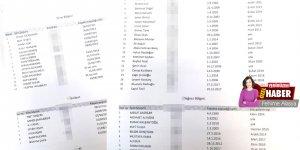 68 kayıt, 343 ödeme