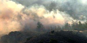 Alevkayası'nda yangın
