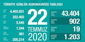 Türkiye'de Coronavirüs nedeniyle 19 kişi hayatını kaybetti, 902 yeni tanı kondu