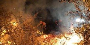 Bedis Piknik alnındaki yangına vatandaş müdahale etti