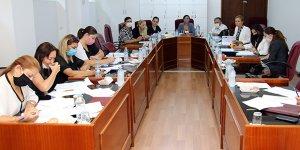 Kamu ve Sağlık İşleri Komitesi toplandı