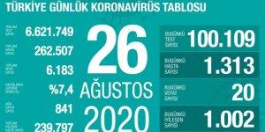 Türkiye'de Coronavirüs: 20 kişi hayatını kaybetti, 1313 yeni tanı kondu