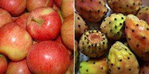 İthal gala elma ve yerli babutsada kalıntı
