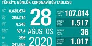 Türkiye'de Coronavirüs: 36 kişi hayatını kaybetti, 1517 yeni tanı kondu