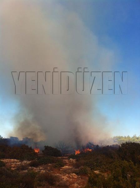 Sadrazamköyde yangın 5