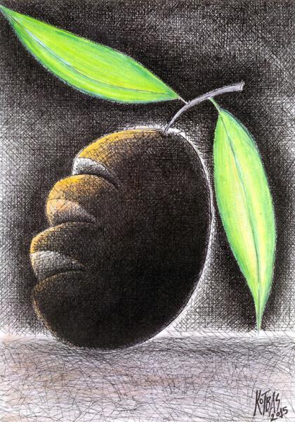 4. Uluslararası Zeytin Karikatürleri Yarışması 2015 14