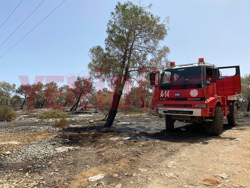 Yangın sonrası yürek burkan manzaralar 1
