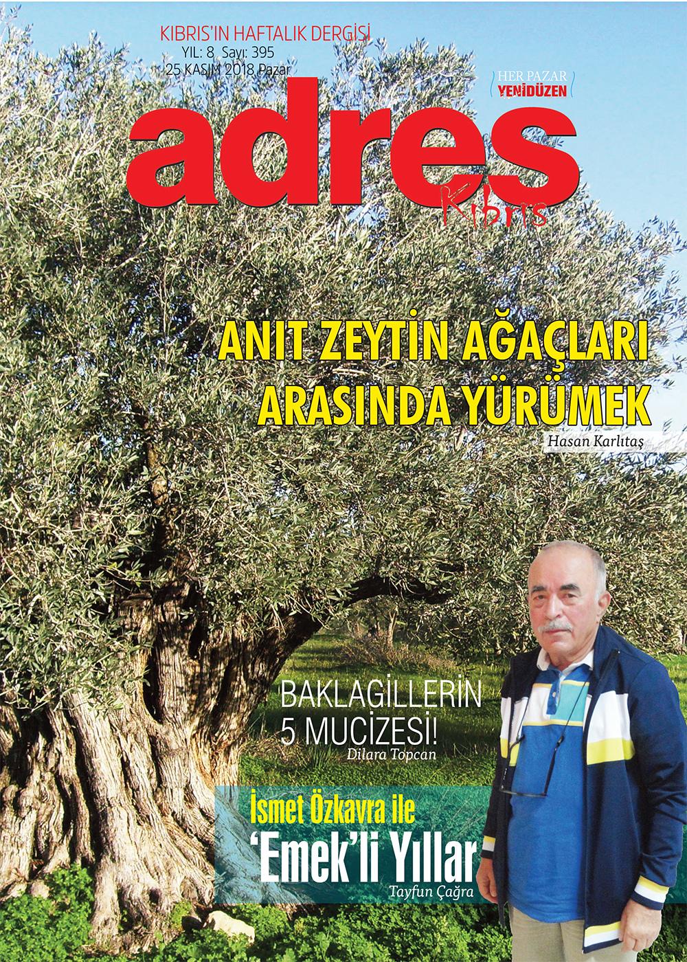 Adres Kıbrıs 395 Sayıs