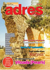 Adres Kıbrıs 290. Sayısı