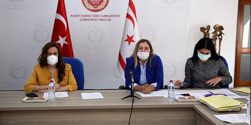 'Kültürel İşbirliği Protokolü'  Yasa Tasarısı  meclise sevk edildi