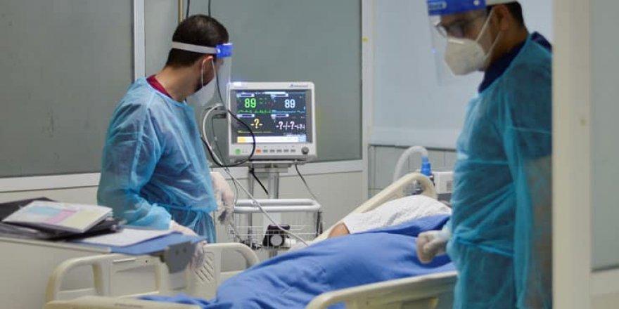 Türkiye'de Coronavirüs: 354 kişi yaşamını yitirdi, yeni vaka sayısı 54 binin üzerinde