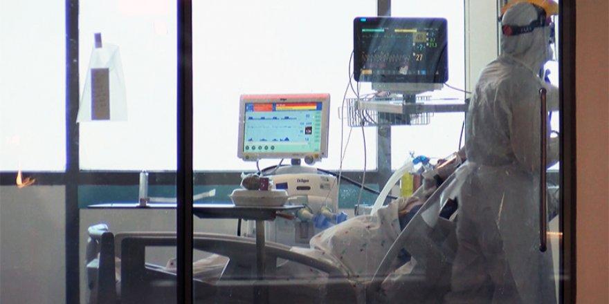 Türkiye'de Coronavirüs: 203 kişi daha hayatını kaybetti, yeni vaka sayısında yükseliş